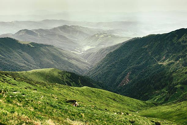 산 풍경 - 카르파티아 산맥 뉴스 사진 이미지