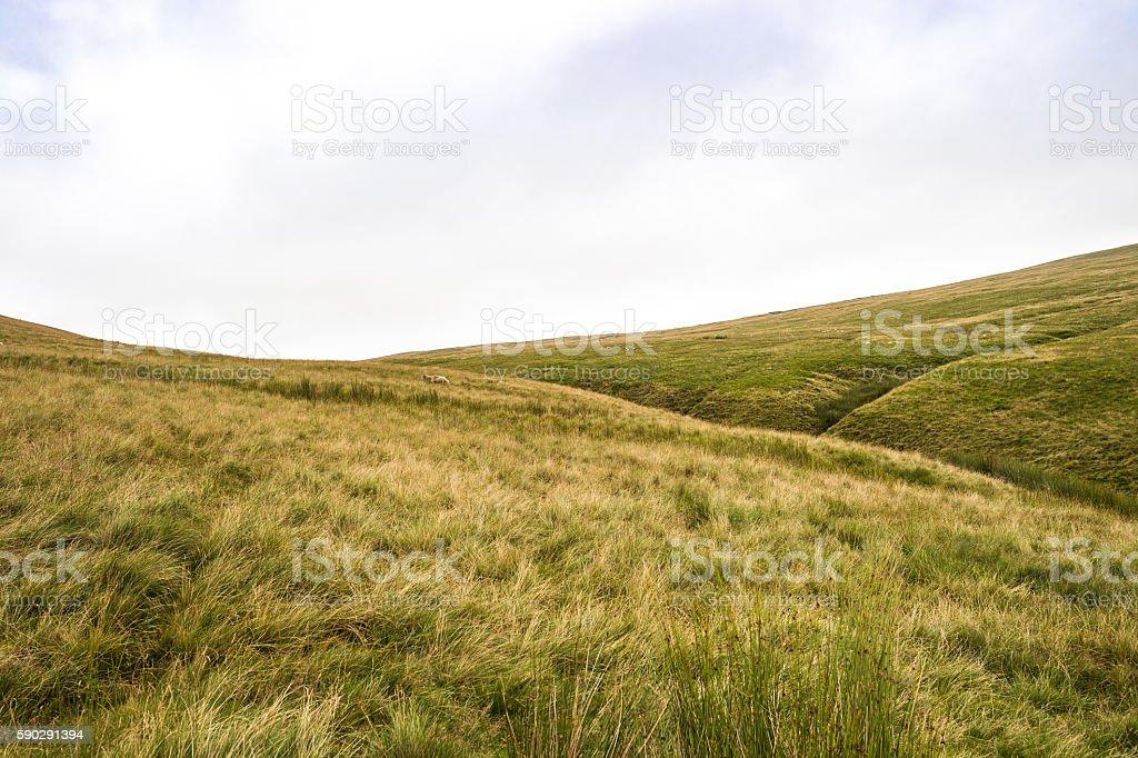 Mountain Landscape, Storey Arms, Brecon Beacons, South Wales, UK Стоковые фото Стоковая фотография