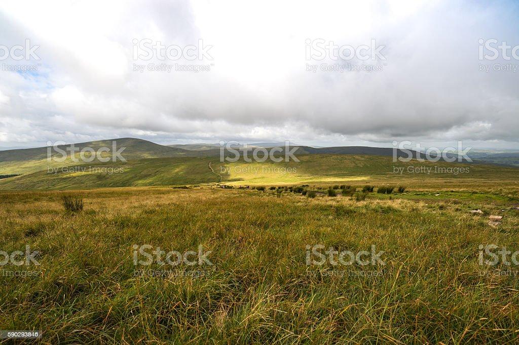 Mountain Landscape, Storey Arms, Brecon Beacons, South Wales, UK royaltyfri bildbanksbilder