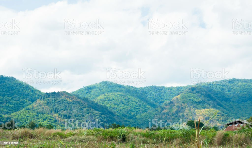 Mountain landscape view with the forest background royalty-free stock photo