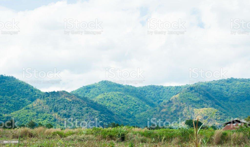 Vista del paisaje de montaña con el fondo del bosque foto de stock libre de derechos