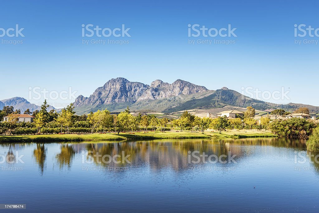 Mountain Landscape Winelands Farm South Africa stock photo