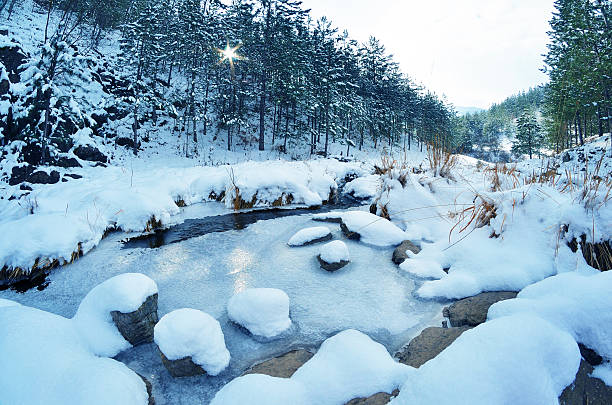 berg landschaft mit einer gefroren creek - lake tahoe winter stock-fotos und bilder