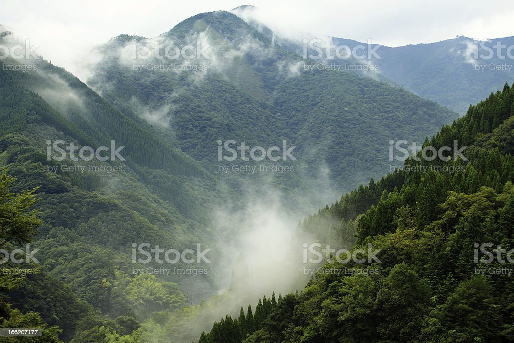 Mountain landscape with fog over forest royalty-free stock photo