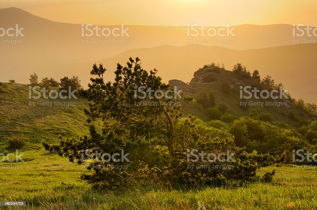 Mountain landscape with golden sunset stock photo