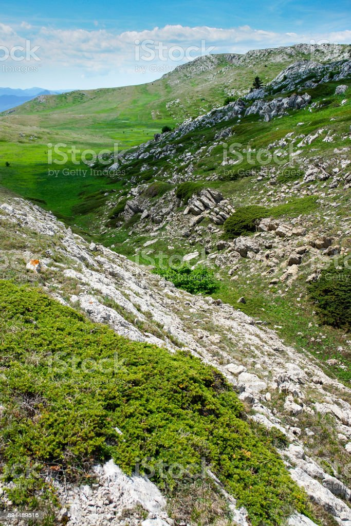 Mountain landscape with green plants stock photo