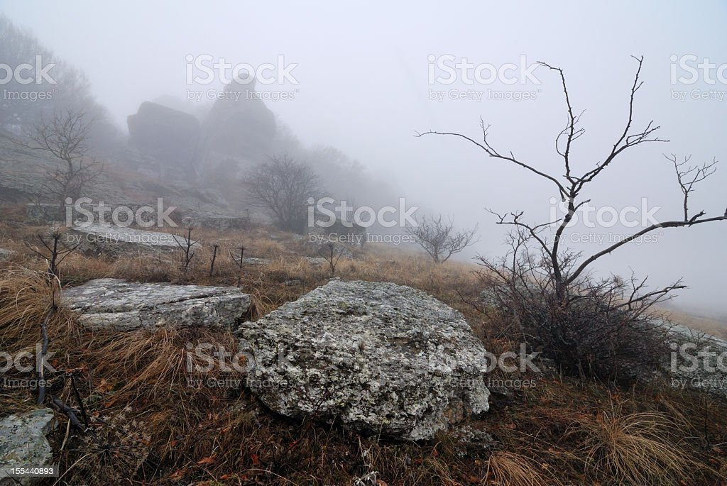 Mountain landscape with rocks in fog stock photo