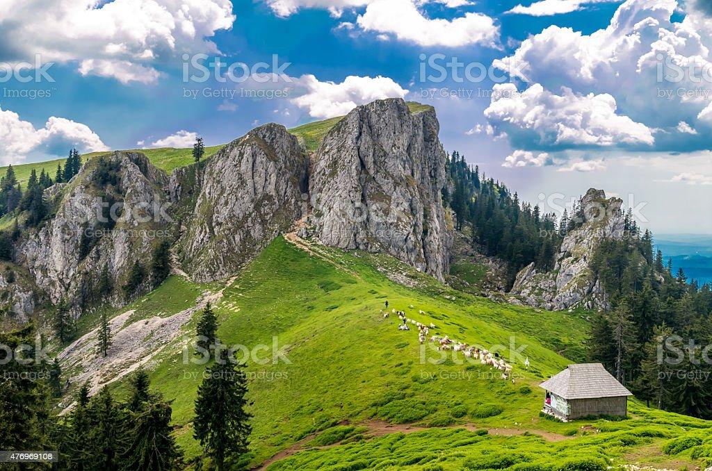 Mountain landscape with sheepfold in Carpathian Mountains, Romania stock photo