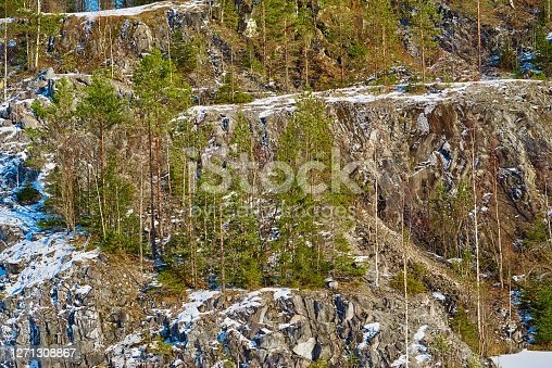 mountain landscape with trees on rocks for a natural background or for wallpaper