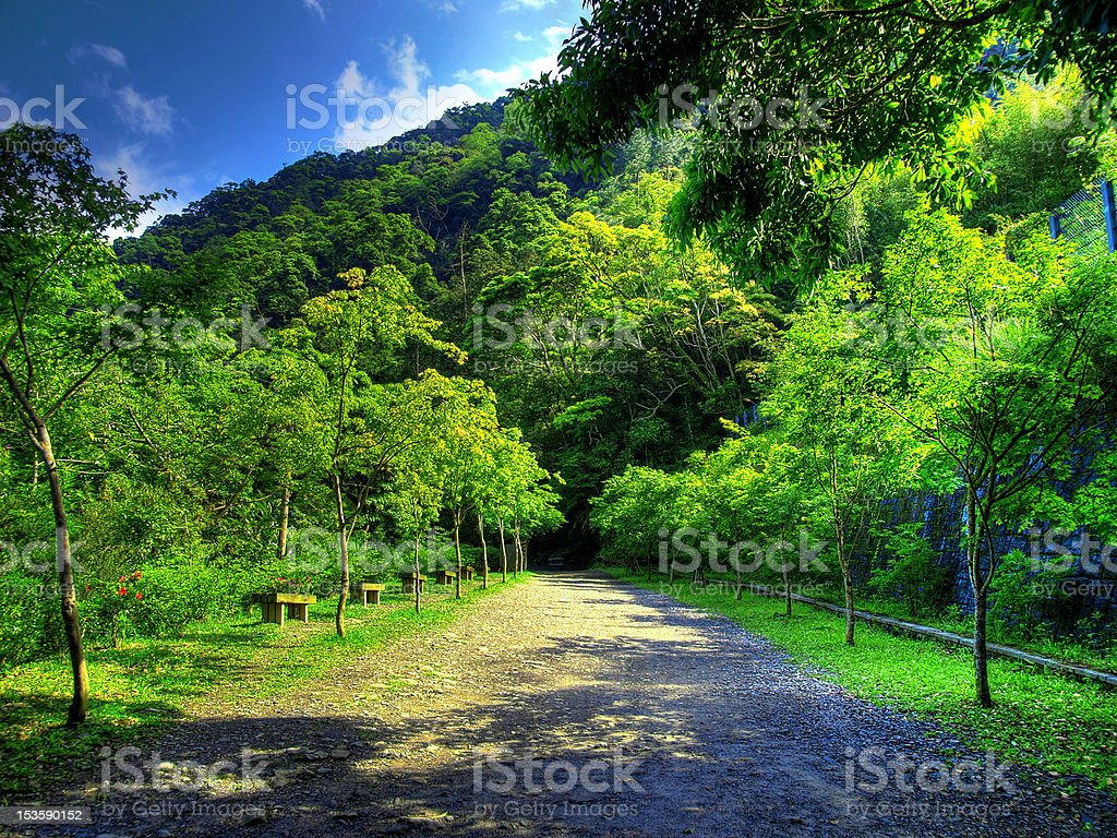 Mountain lane royalty-free stock photo