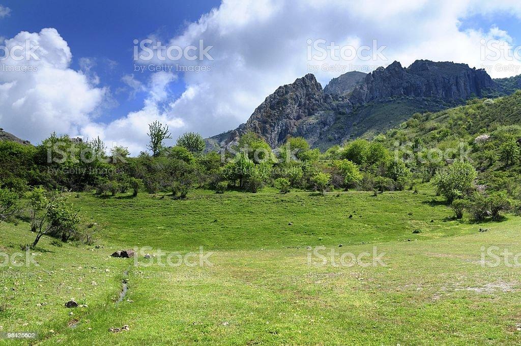 meadow Mountain foto stock royalty-free