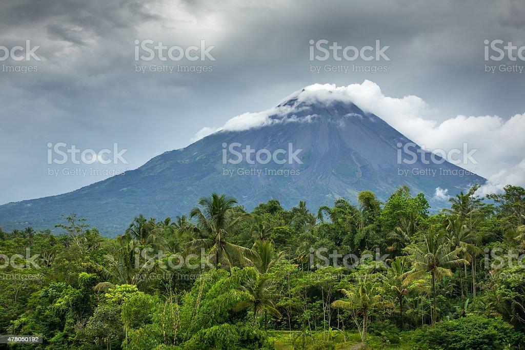 Mountain Merapi volcano, Java, Indonesia stock photo