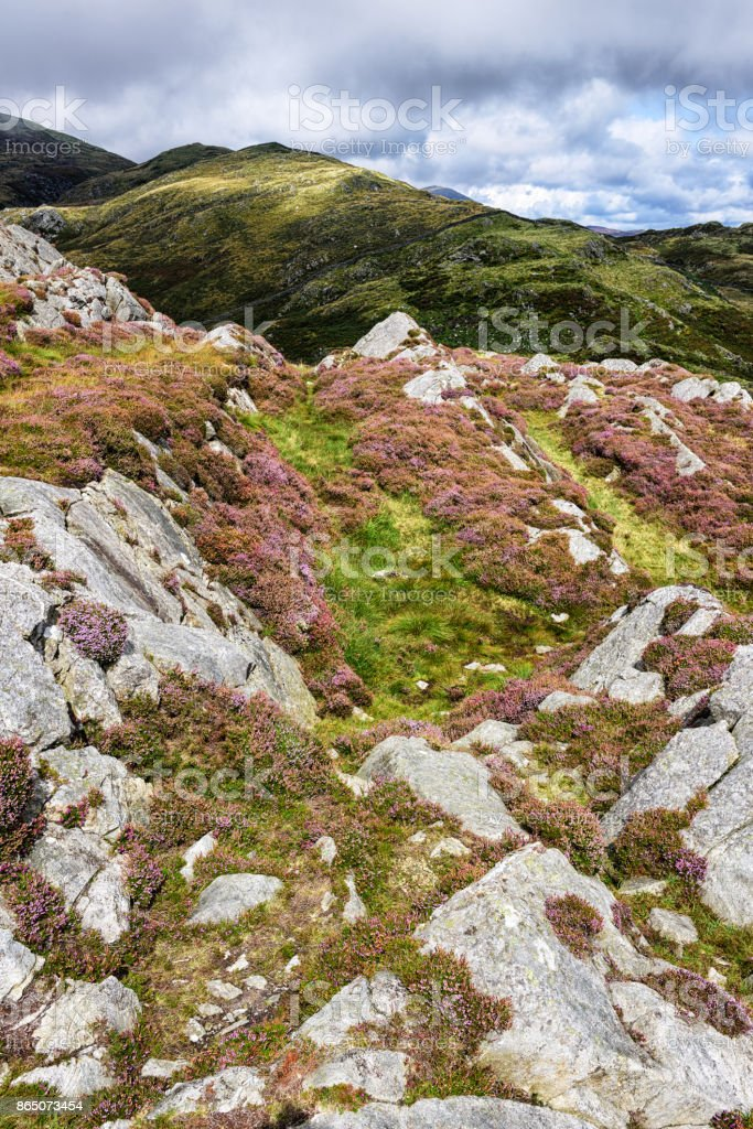 Mountain moorland,  Barmouth, Wales stock photo