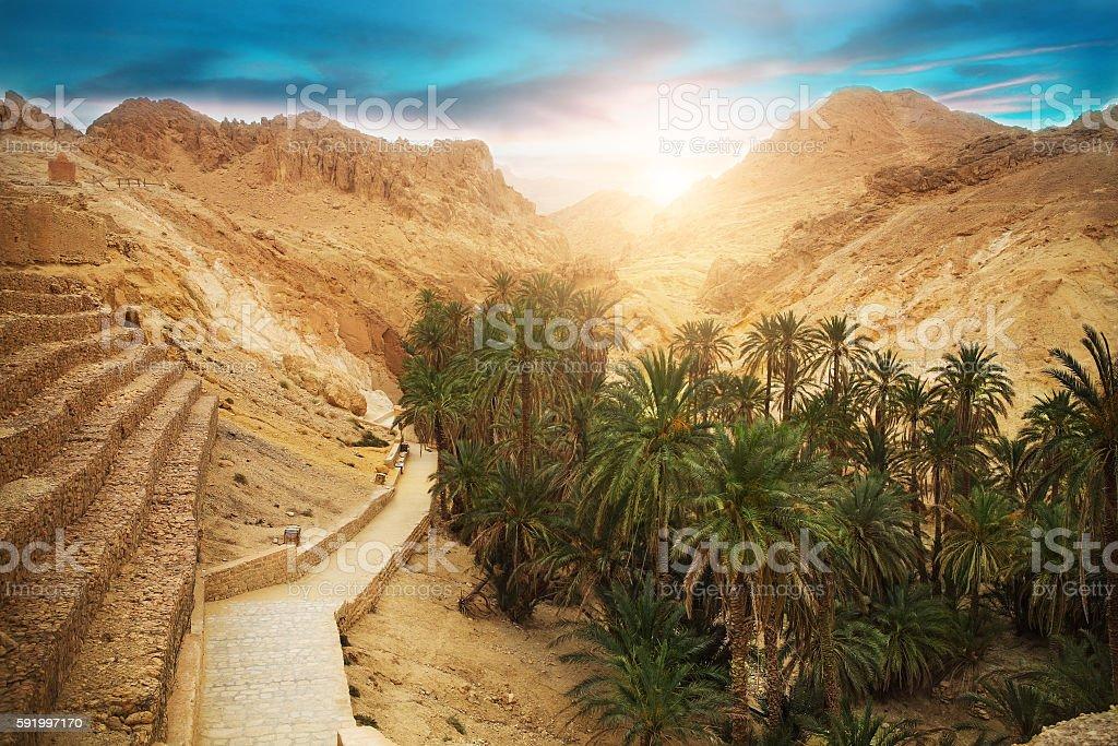 Mountain oasis Chebika, Sahara desert, Tunisia, Africa stock photo
