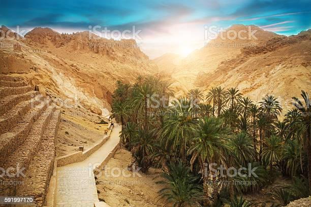 Photo of Mountain oasis Chebika, Sahara desert, Tunisia, Africa