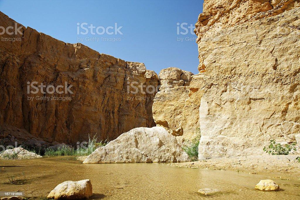 Mountain oasis Tamerza. royalty-free stock photo