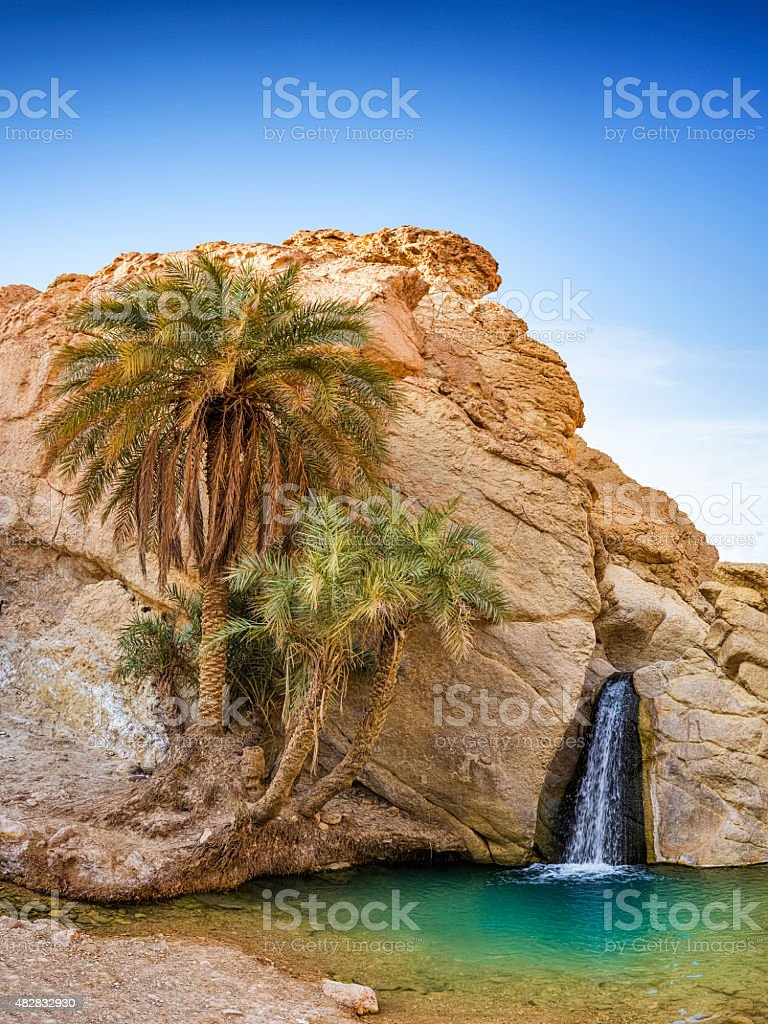 Mountain oasis with palms and waterfall in Chebika , desert Tunisia stock photo
