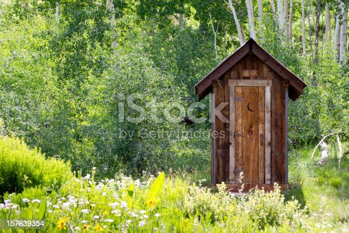 Antique outhouse made of rustic rough-hewn wood standing in the mountains of Colorado with the classic half moon cut out in the door.  The aspen tree forest in the background and the natural grasses and flowers in the foreground are all lush, green and in full boom of summer.Rustic old outhouse in the high mountains of Colorado