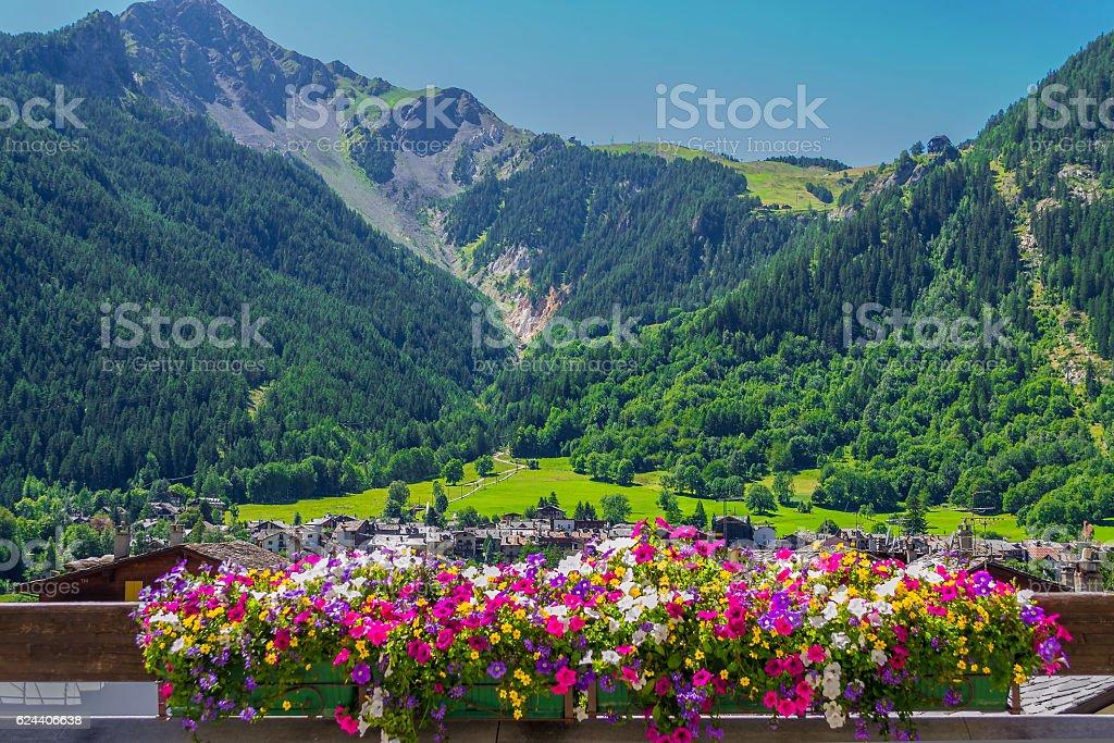 Mountain panorama with flowerpot in Courmayeur (Aosta, Italy) - Foto stock royalty-free di Agosto