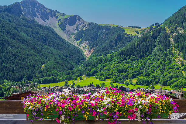 Mountain panorama with flowerpot in Courmayeur (Aosta, Italy) stock photo