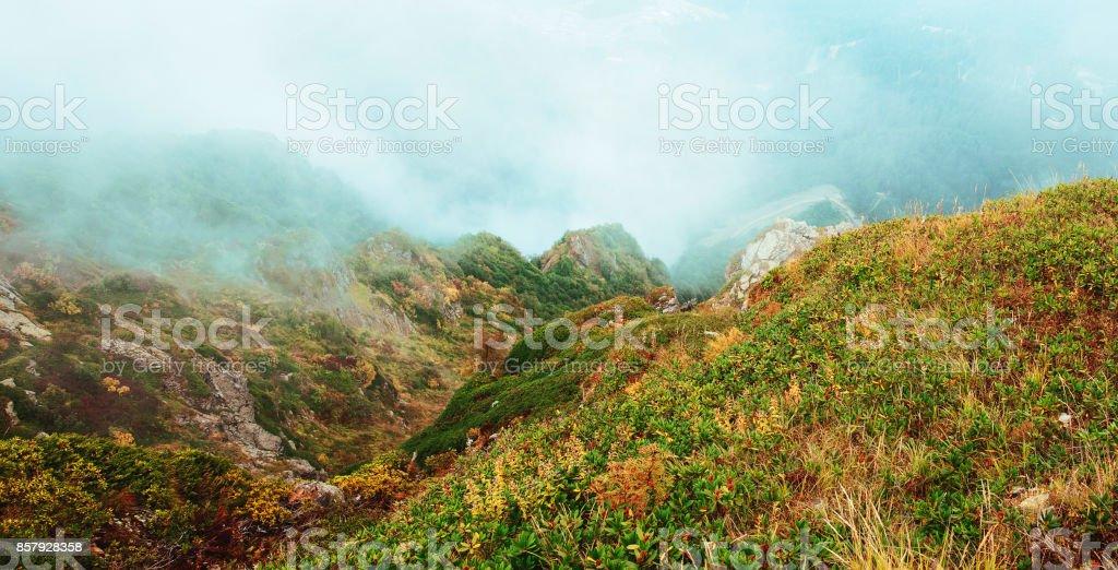 Mountain panorama with fog stock photo