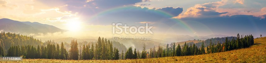 mountain panorama with forest on meadow at sunset. beautiful autumn weather. clouds and fog rising above the hills with row of spruce trees in evening light beneath a rainbow.