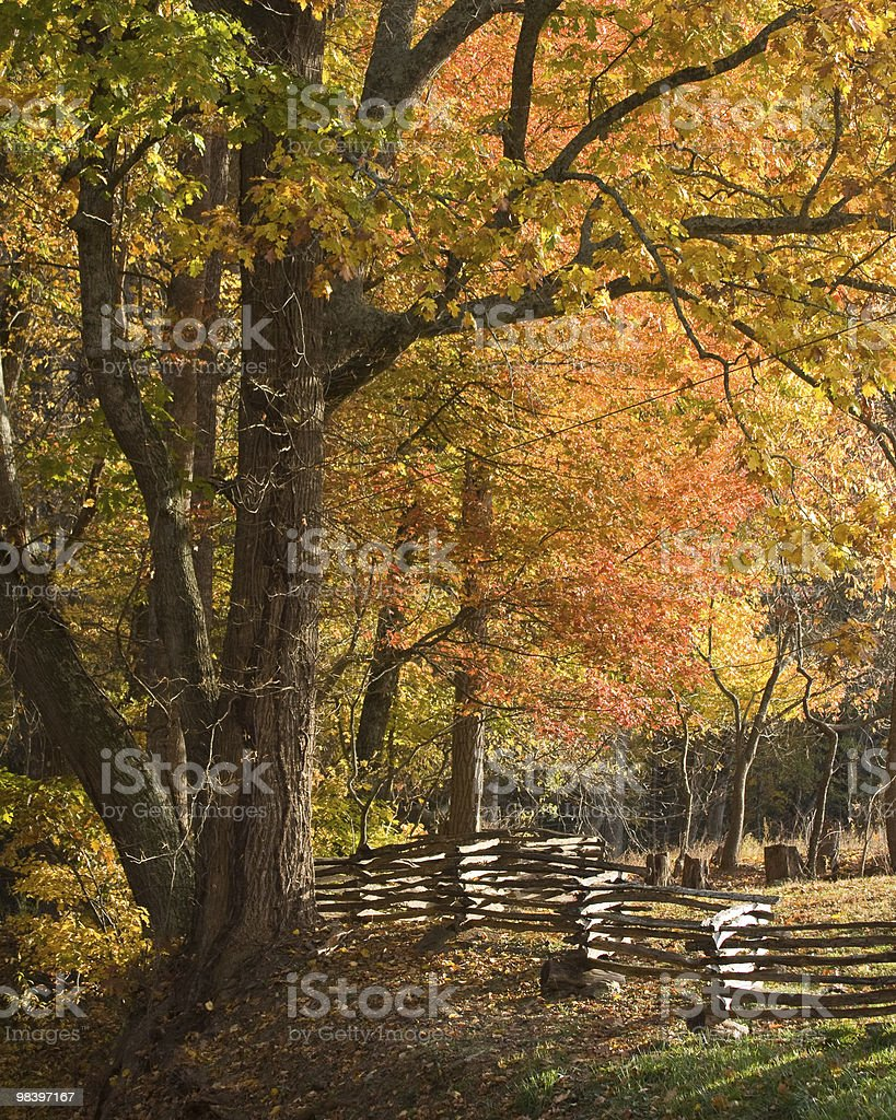 Mountain pasture with split rail wooden fence, autumn leaves. royalty-free stock photo