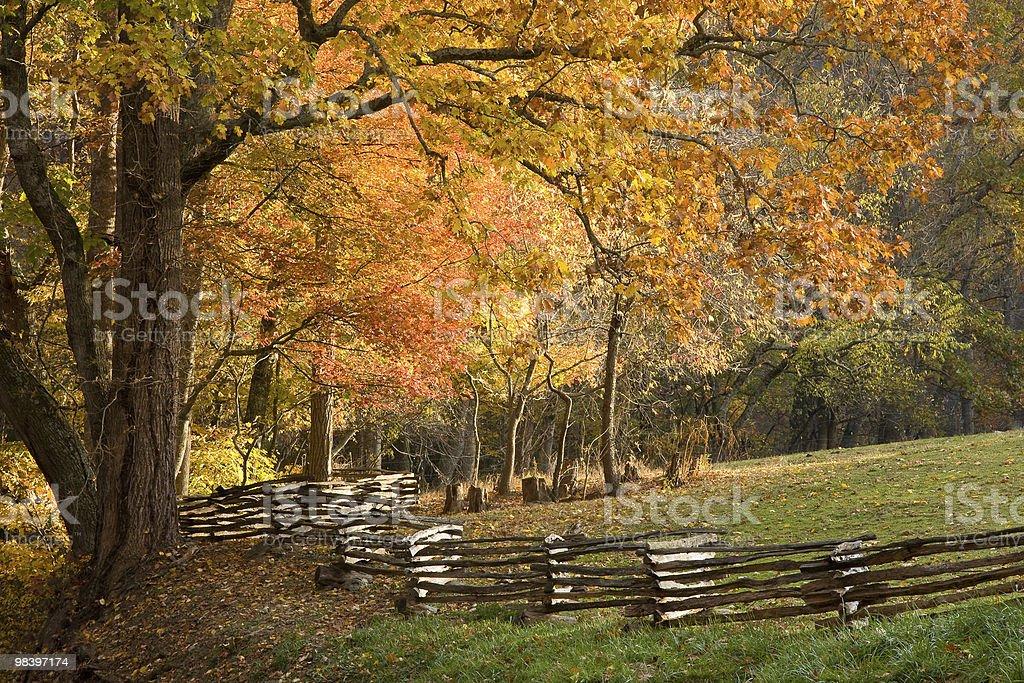 Mountain pascolo con split rail recinzione in legno, le foglie autunnali. foto stock royalty-free