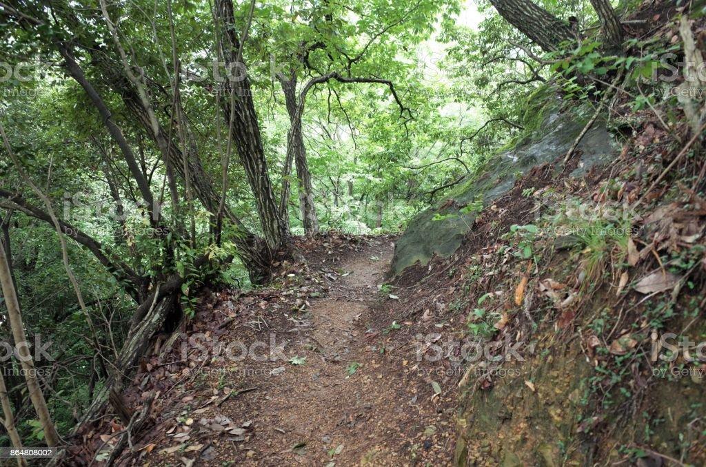 Mountain path - mountain road - hiking stock photo