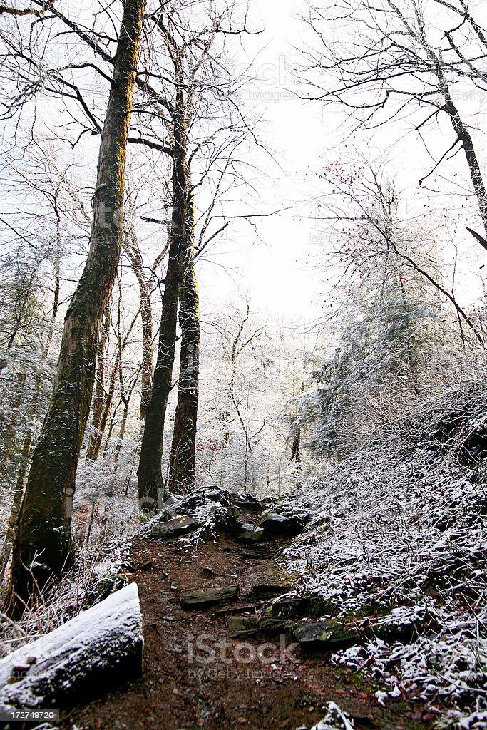 Mountain Path royalty-free stock photo