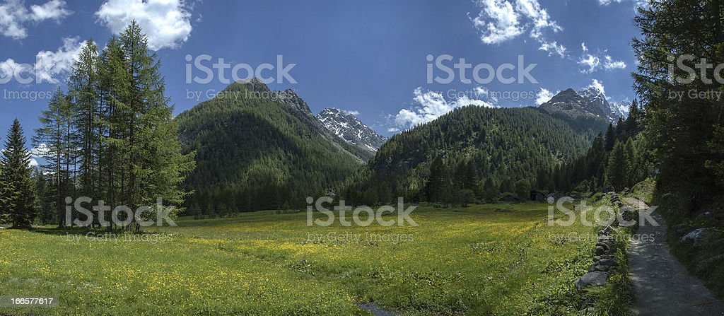 mountain path, Valmalenco - Italy royalty-free stock photo