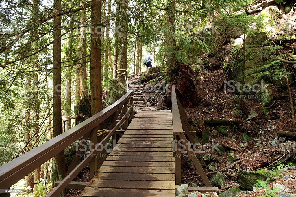 Bergpfad mit bridge in Vancouver, BC – Foto