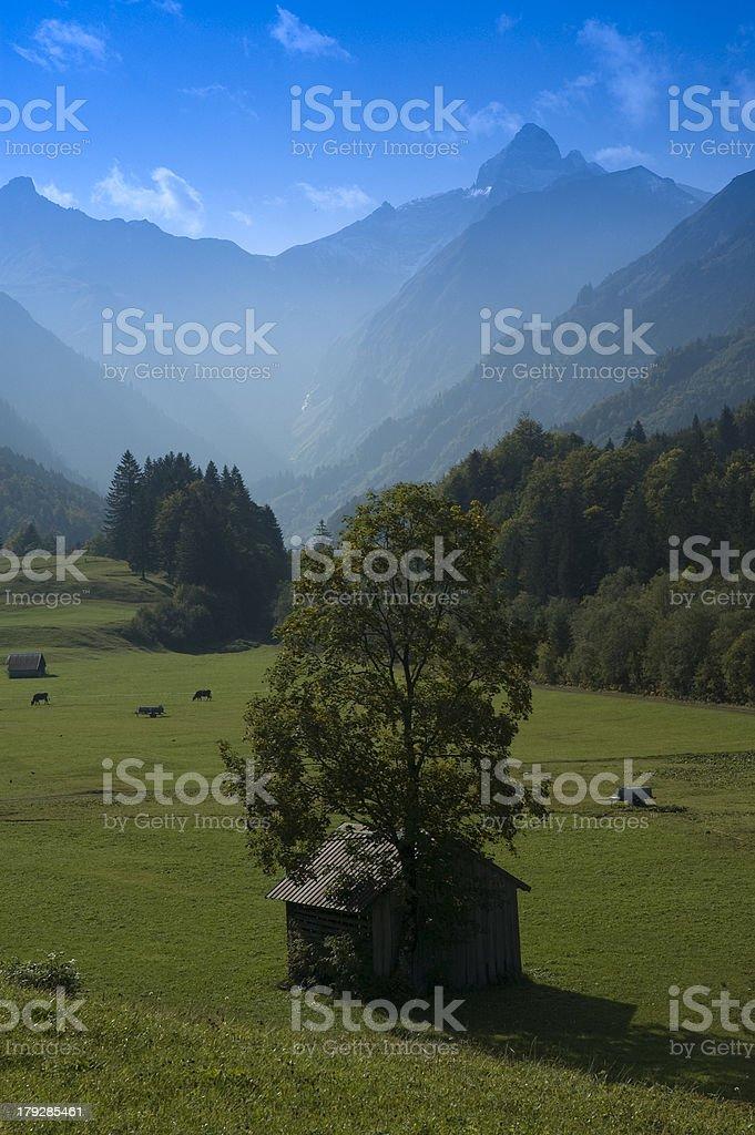 Mountain Peak in the Bavarian Alpes royalty-free stock photo
