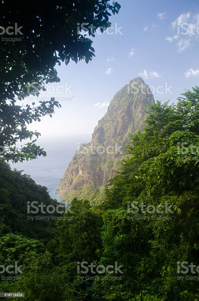 mountain peak of petit piton through bush stock photo