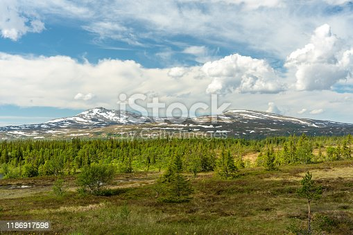 Beautiful summer landscape view of snow covered mountain peaks far up in northern Sweden just at the tree line, at the border into Norway.
