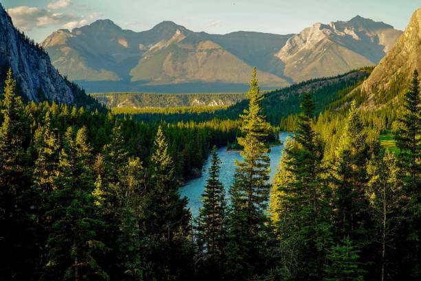 Mountain Peaks over Bow River stock photo