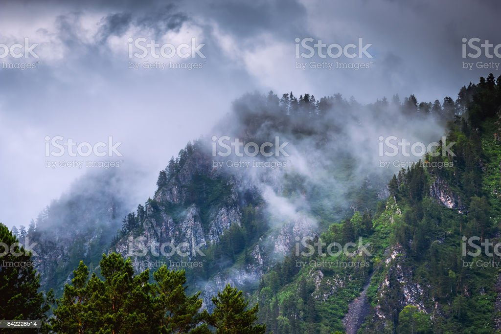 mountain peaks with forest in fog and clouds stock photo