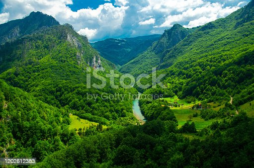Mountain range and small village houses in green forest near Tara river gorge canyon, view from Durdevica Tara Bridge, Montenegro