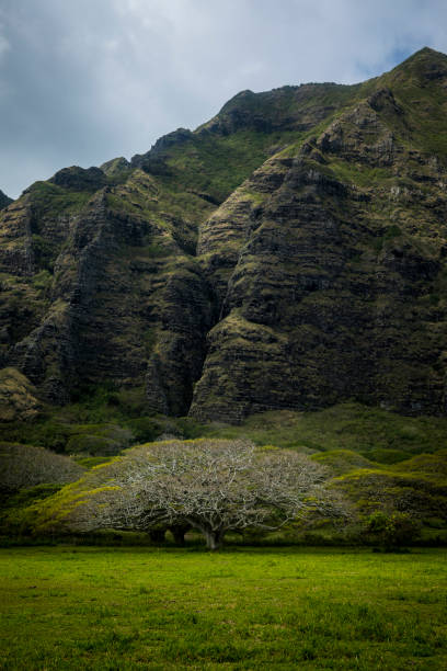 Mountain range by famous Kualoa Ranch in Oahu, Hawaii where 'Jurassic Park' was filmed. stock photo