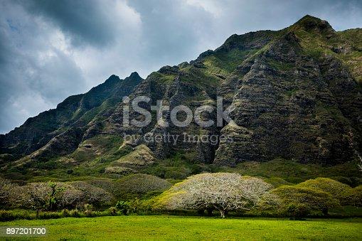 istock Mountain range by famous Kualoa Ranch in Oahu, Hawaii where 'Jurassic Park' was filmed. 897201700