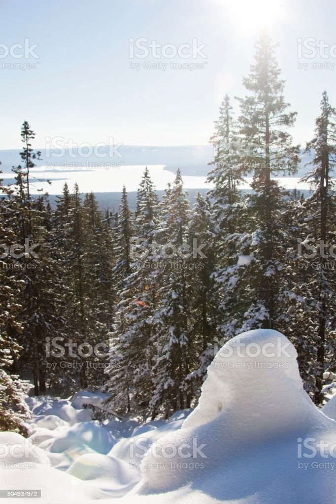 Mountain range Zuratkul, winter landscape. Snowdrifts near forest stock photo