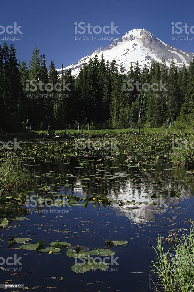 Mountain Reflected in Lake royalty-free stock photo