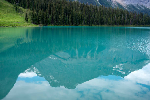 Mountain reflection in Emerald Lake Mountain reflection in Emerald Lake, Yoho National Park, Canada emerald lake stock pictures, royalty-free photos & images