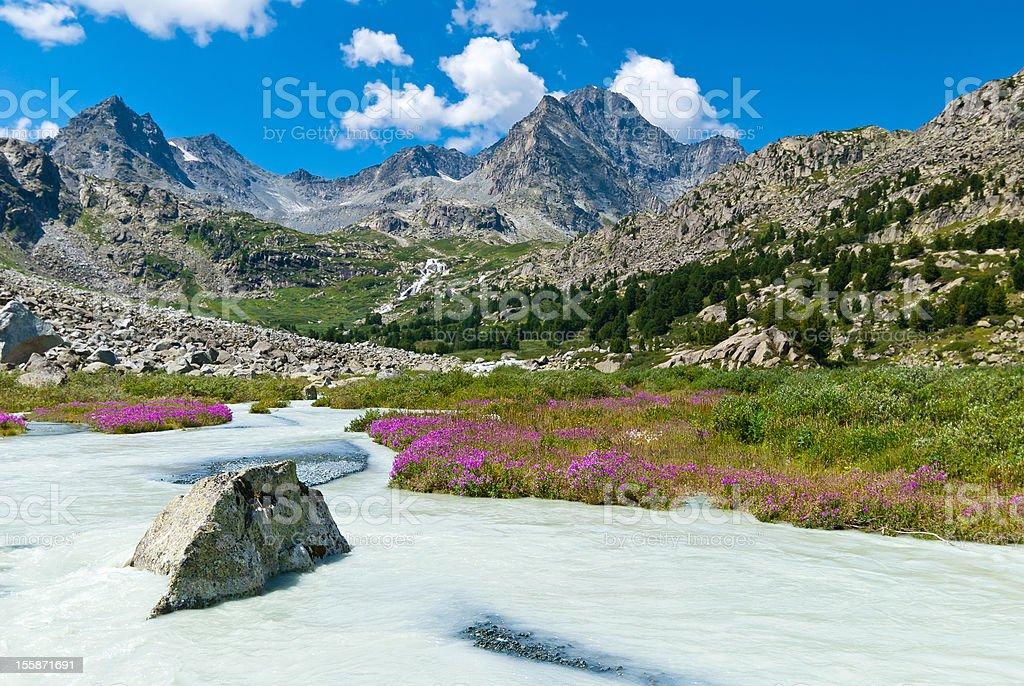 Mountain river, Altay stock photo