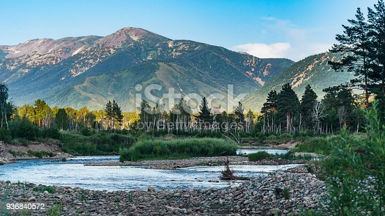 istock Mountain river and forest trees on the sunset, Altai Mountains, Kazakhstan 936840572