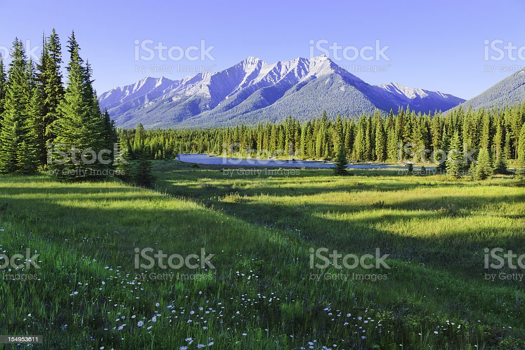 Mountain, river, and meadow stock photo