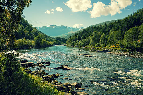 bergfluss im herbst. norwegen - bach stock-fotos und bilder