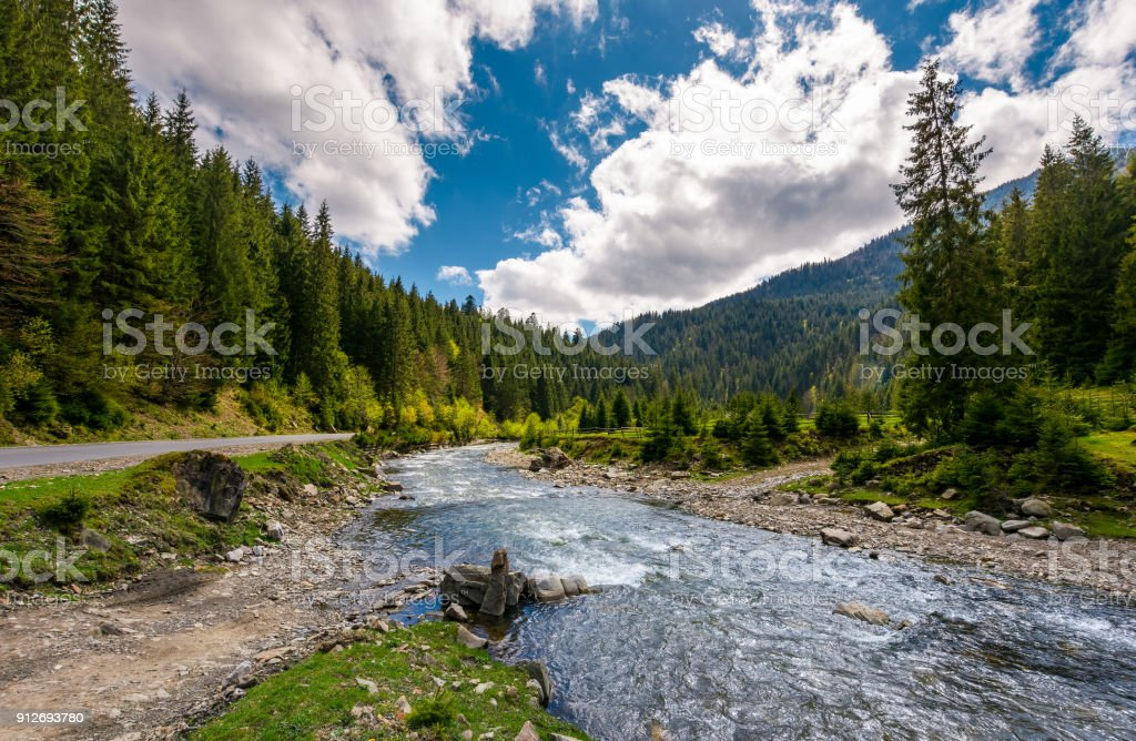 mountain river in springtime stock photo