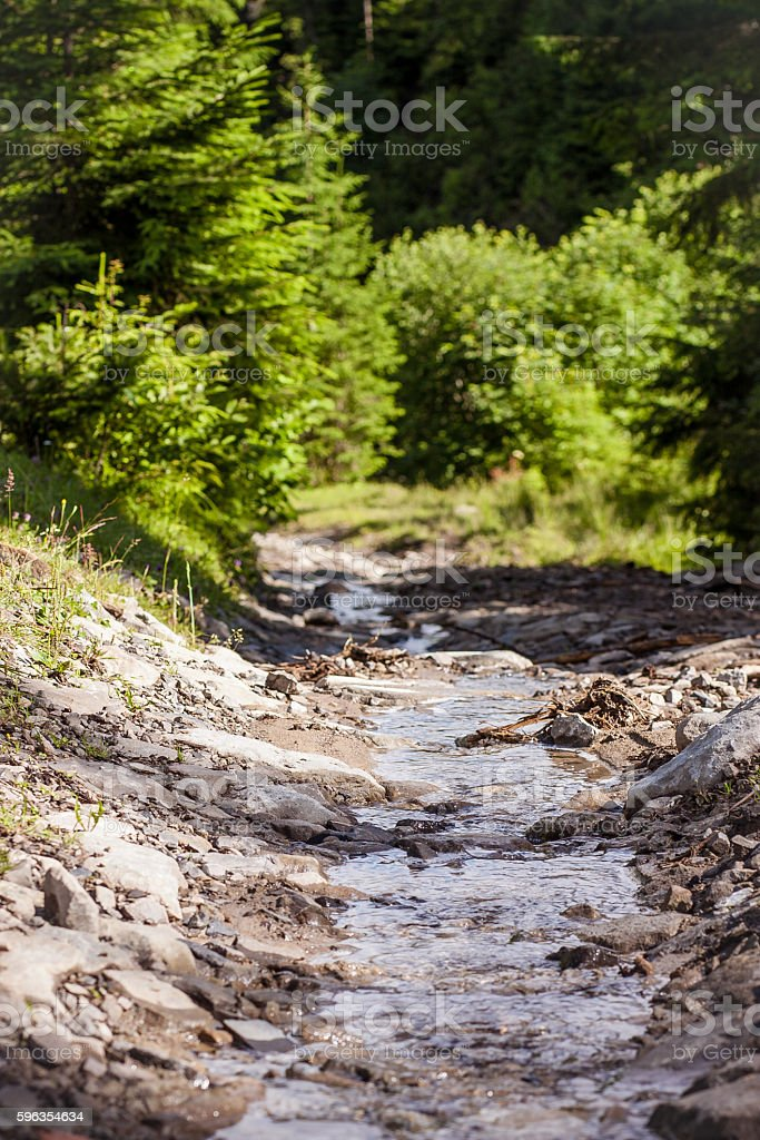 Mountain River in the Carpathians royalty-free stock photo