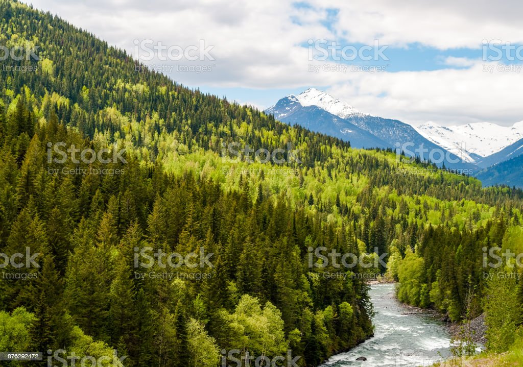 Mountain river in the colorful forest of British Columbia - Canada stock photo
